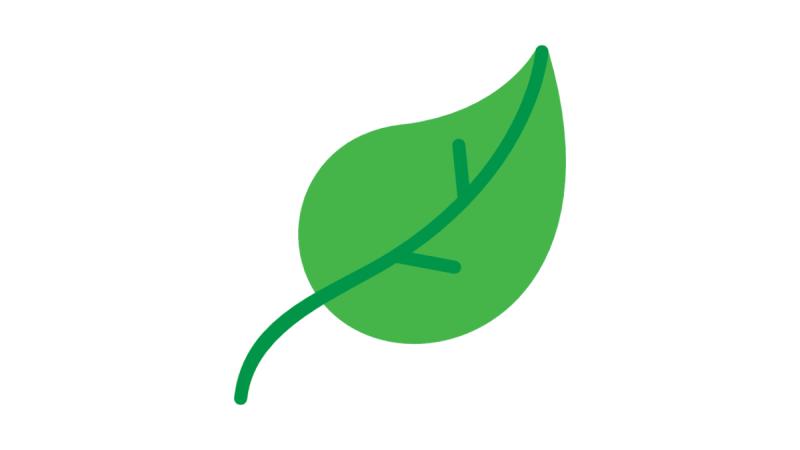 Essai Nissan Leaf e+ 62 kWh : le meilleur de la Leaf