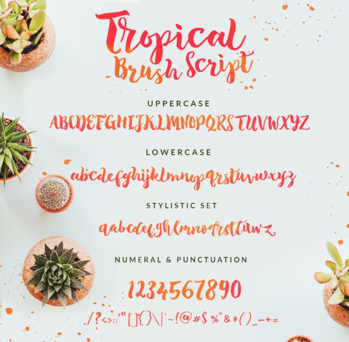 The Tropical 8