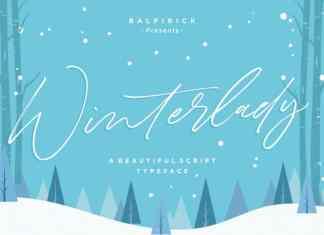 Winterlady Beautiful Script Font