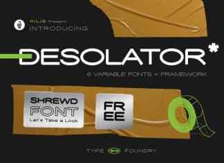 Desolator Sans Serif Font