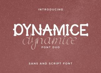 Dynamice Font Duo
