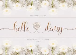 Hello Daisy Calligraphy Script