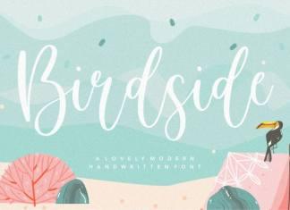 Birdside Lovely Modern Handwritten Font