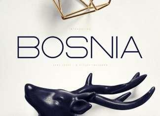 Bosnia Sans Serif Font