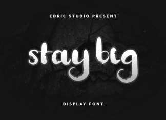 Stay BIG Display Decorative Font