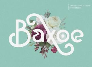 Baxoe Sans Serif Font