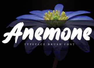 Anemone Brush Font