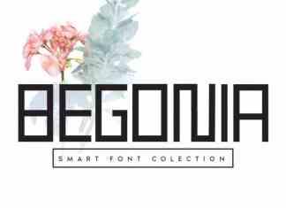 Begonia Display Font
