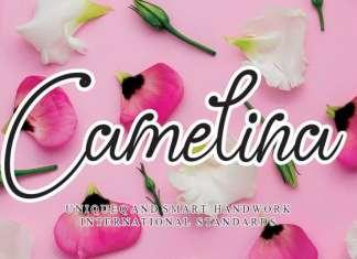 Camelina Handwritten Font