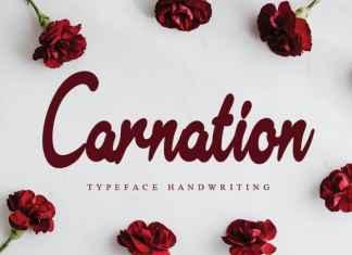 Carnation Handwritten Font