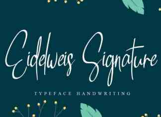 Eidelweis Signature Script Font