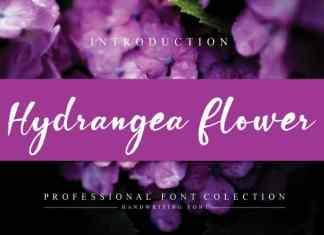 Hydrangea Flower Script Font