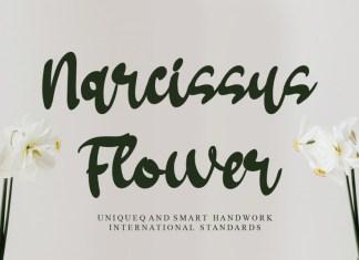 Narcissus Flower Brush Font