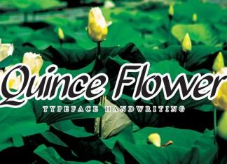 Quince Flower Brush Font