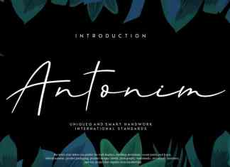 Antonim Script Font