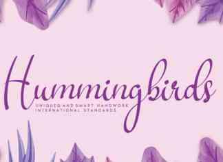 Hummingbirds Script Font