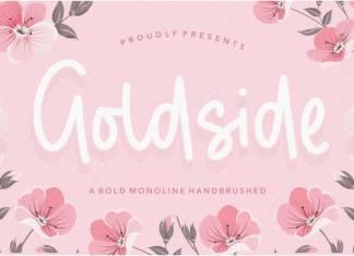 Goldside Bold Monoline Handbrushed Font