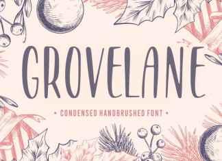 GROVELANE Handbrushed Font