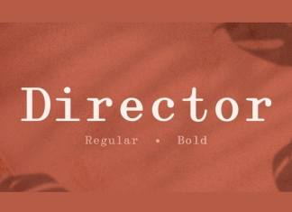 Director Serif Font