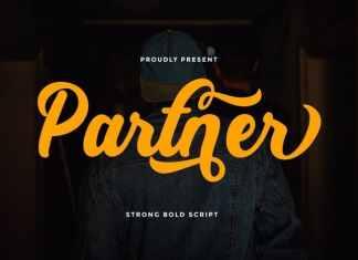 Partner Script Font