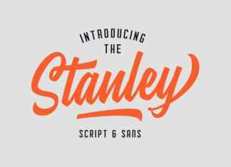 Stanley Calligraphy Font