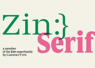 Zin Serif Font