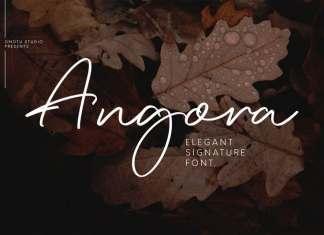 Angora Handwritten Font