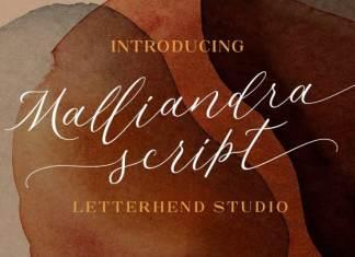 Malliandra Calligraphy Font