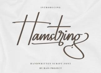 Hamstring Script Font