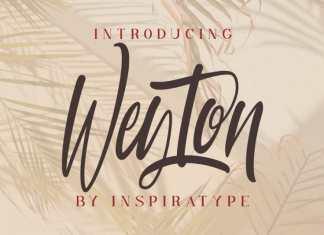 Weyton Calligraphy Font