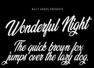Wonderful Night Script Font