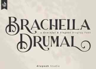 Barchella Drumal Display Font