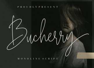 Bucherry Handwritten Font