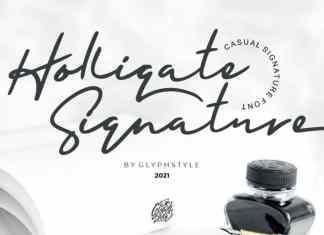 Holligate Signature Script Font