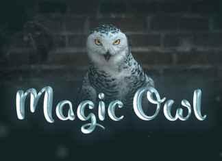 Magic Owl Script Font