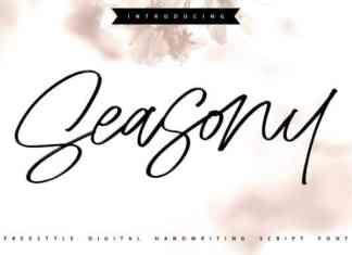 Seasony Script Font