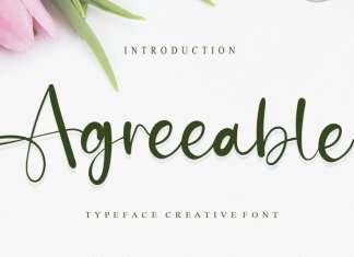 Agreeable Script Font