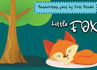Littel Fox Display Font