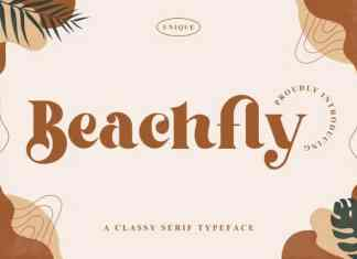 Beachfly Serif Font