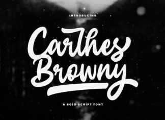 Carlhes Browny Bold Script Font