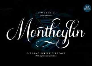 Montheylin Calligraphy Font