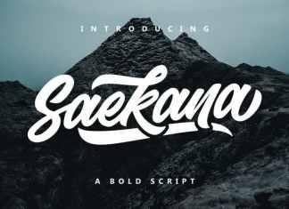 Saekana Bold Script Font