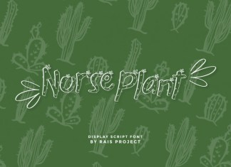 Nurse Plants Display Font