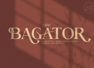 Bagator Serif Font
