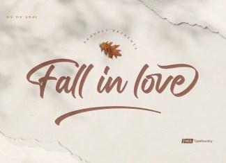 Fall in love Script Font