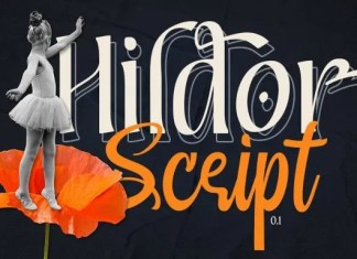 Hildor Font Duo