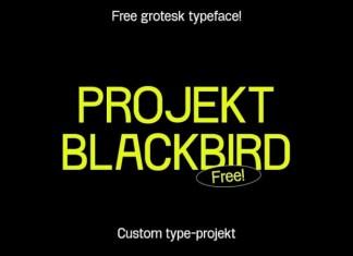 Project Blackbird Sans Serif Font