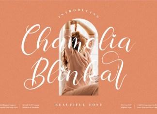 Chamelia Blinkar Calligraphy Font
