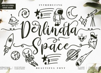 Derlinata Space Calligraphy Font