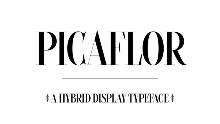 Picaflor Serif Font